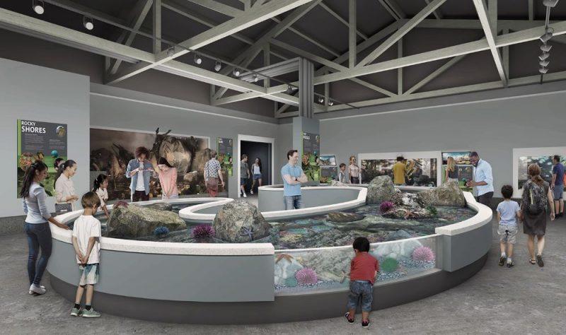Oregon Coast Aquarium unveils $18m expansion plans | blooloop