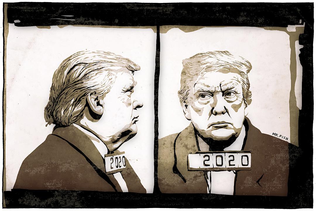 Trump 2020 - Mr. Fish