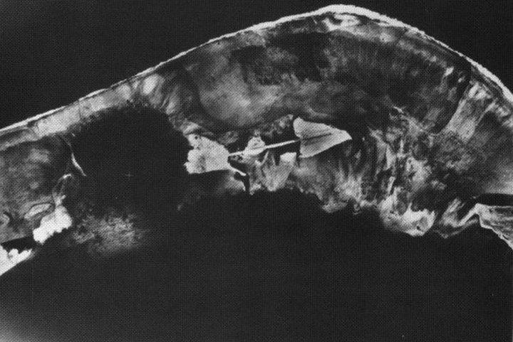 An aerial shot of the Enewetak Atoll