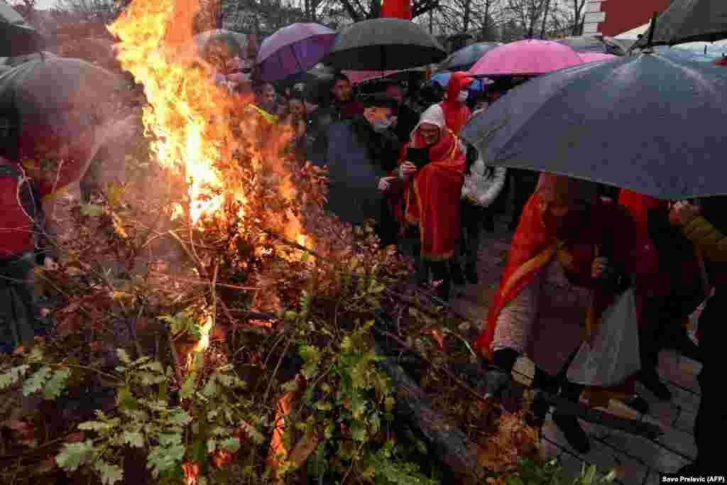 Montenegrin believers burn oak trees in Cetinje.