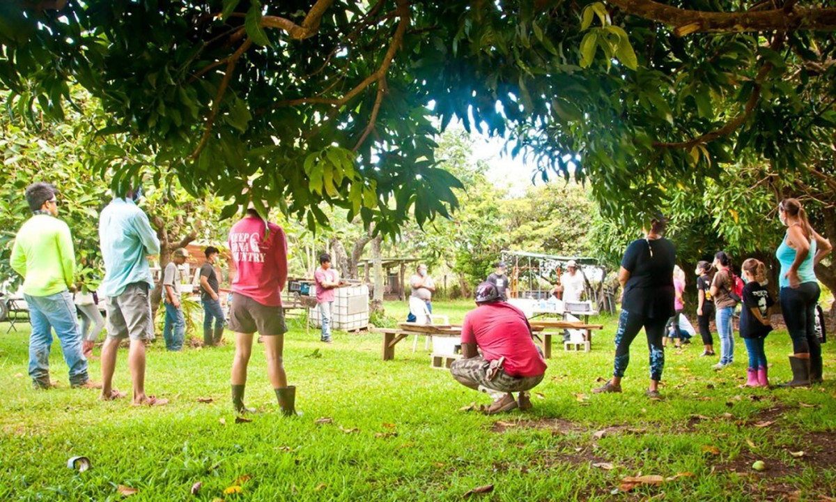 Members of the Ho'okahua Ai Mentorship Program at Kahua Pa'a Mua prepare for a Hawaiian Oli (chant), which involves asking the almighty from above and ancestors for permission and wisdom. (Photo: Malia Welch)